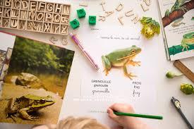 Activités sur la grenouille, les étangs et rivières en maternelle ...